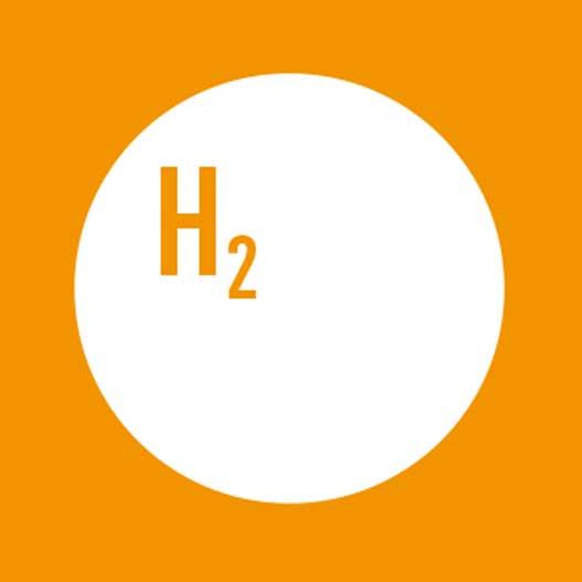 Deutscher Wasserstoffverband